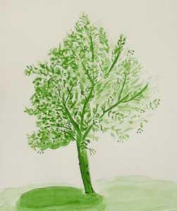 absolute beginner watercolour tree