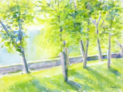 green lime grove trees watercolour