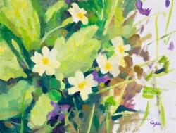 'Primroses & Violet 2' Oil on panel. 24 x 18 cm.