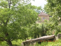 Garden in the Dordogne