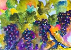 'Grapes' by Daniel. Watercolour & ink