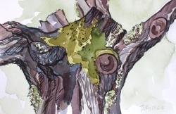 Tree by Tuttu