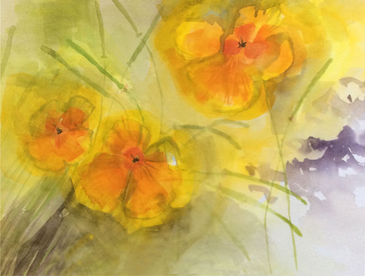 'Californain Poppies' by Hanna. Advanced level watercolour