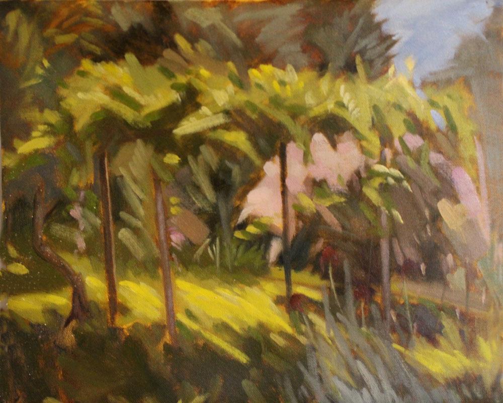 Rose bush by Philip. Plein air oil study