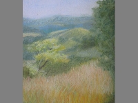 grasses-over-beduer-pastel