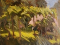 Rose bush by Philip. Plein air oil study
