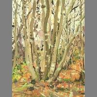 'Coppiced Hornbeams, Winter' Oil on Panel, 30 x 40 cm