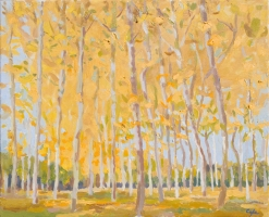 'Golden Poplars.' Oil on Canvas. 46 x 38 cm. Available