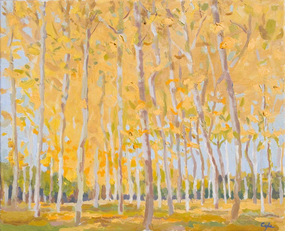 'Golden Poplars.' Oil on Canvas. 46 x 38 cm. Available