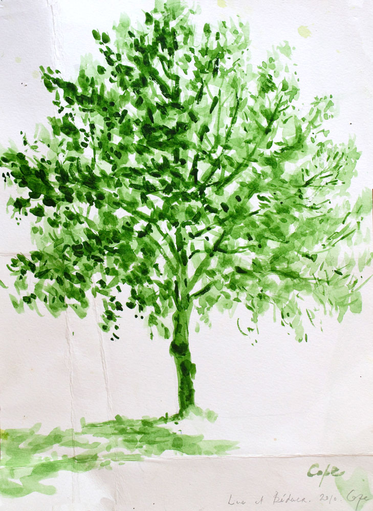 'Lime in the Lot' Demonstration piece. Watercolour 30 x40. Available.