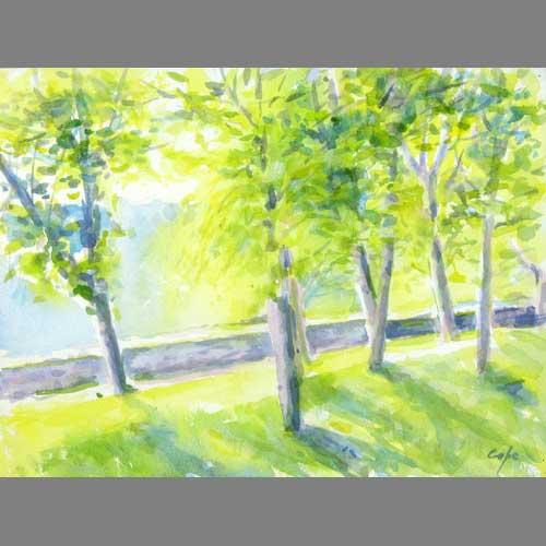 """'Lime Grove, Chateau de Beduer' Watercolour, 15 """"x 11"""
