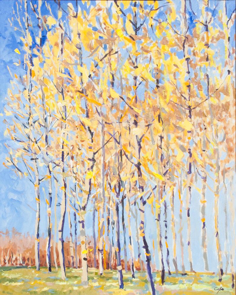 'Poplars' Oil. 81 x 65 cm