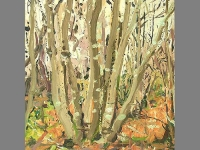 'Coppiced Hornbeams, Winter' Oil on Panel, 30 x 40 cm