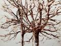 'Two Oaks' Pen & Ink. 30 x 30 cm