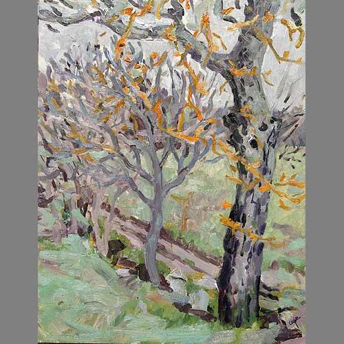 'Walnuts in Winter' Oil on Panel, 30 x 40 cm