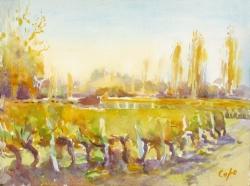 \'Vignes, Boisse\'. Aquarelle. 28 x 38cm. Sold