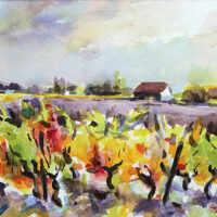 old wine stocks dancing autumne wine vines viuex cepes aquarelle watercolour