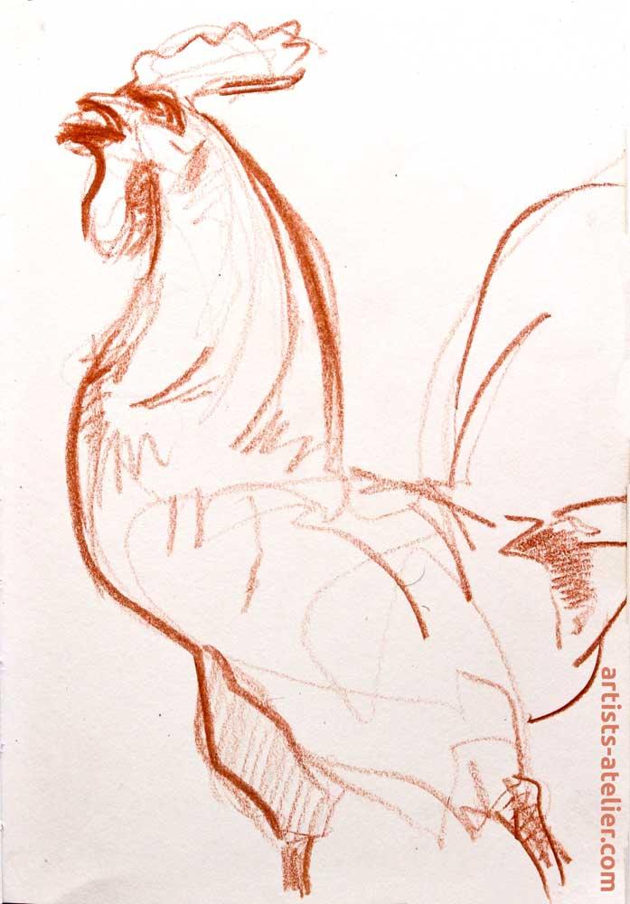 coq francais, chnanson, gesture drawing, sketch, chanter, aux armes!,