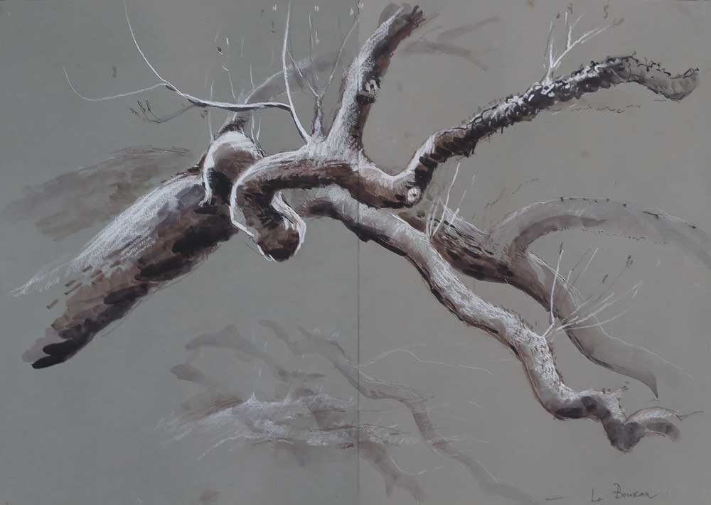 drawing, tree brabnches, tonal three dimensions, white chalk on grey paper, winter branches