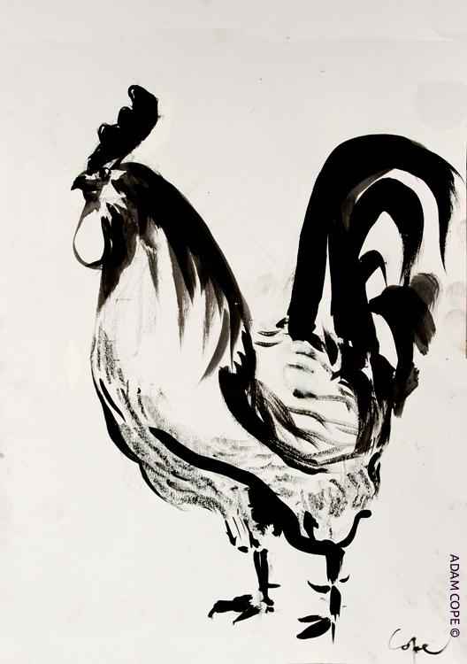 coq,cockerel, ink, drawing, crest, black white,