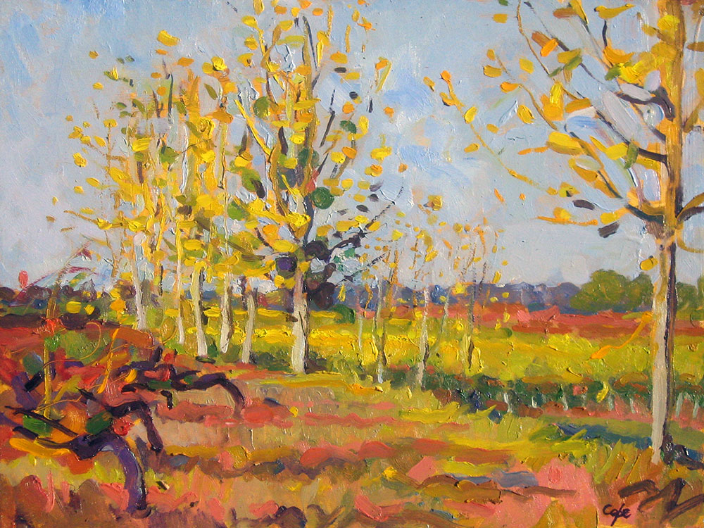 vignoble, oil painting, alla prima, pleinair, autumn, Adam Cope, leaves,