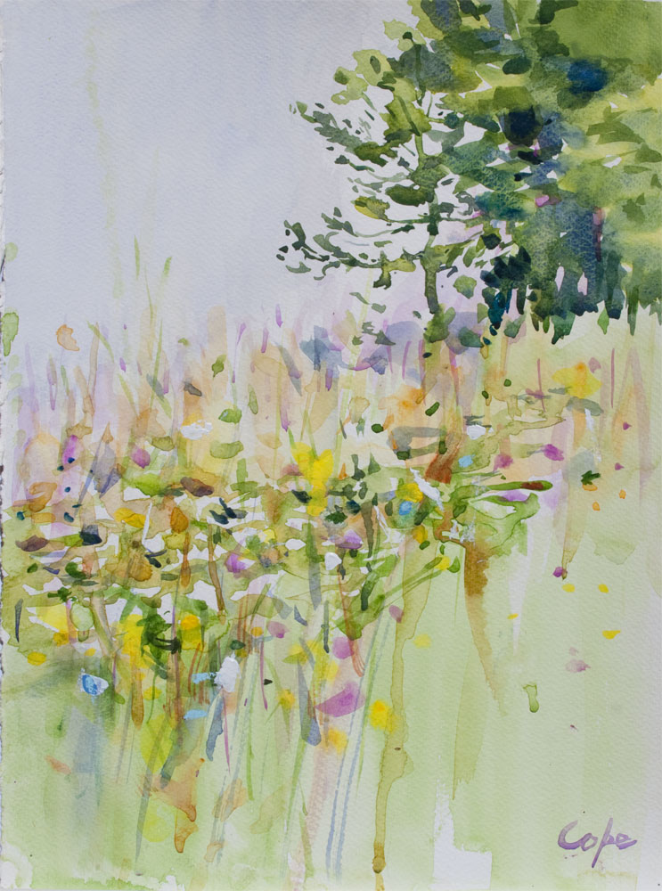 fleurs, champetre, aquarelle,wet-in-wet, high grass,meadow, wild flowers