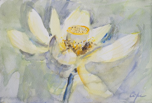 Lotus Watercolour, aquarelle, non botanical, wet on wet, bokeh,pond