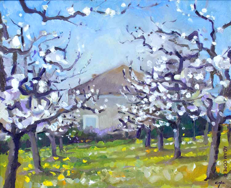 peinture, plum blossom,plein air, pruneaux dagen, lot garonne, castillonnes, oil painting, france