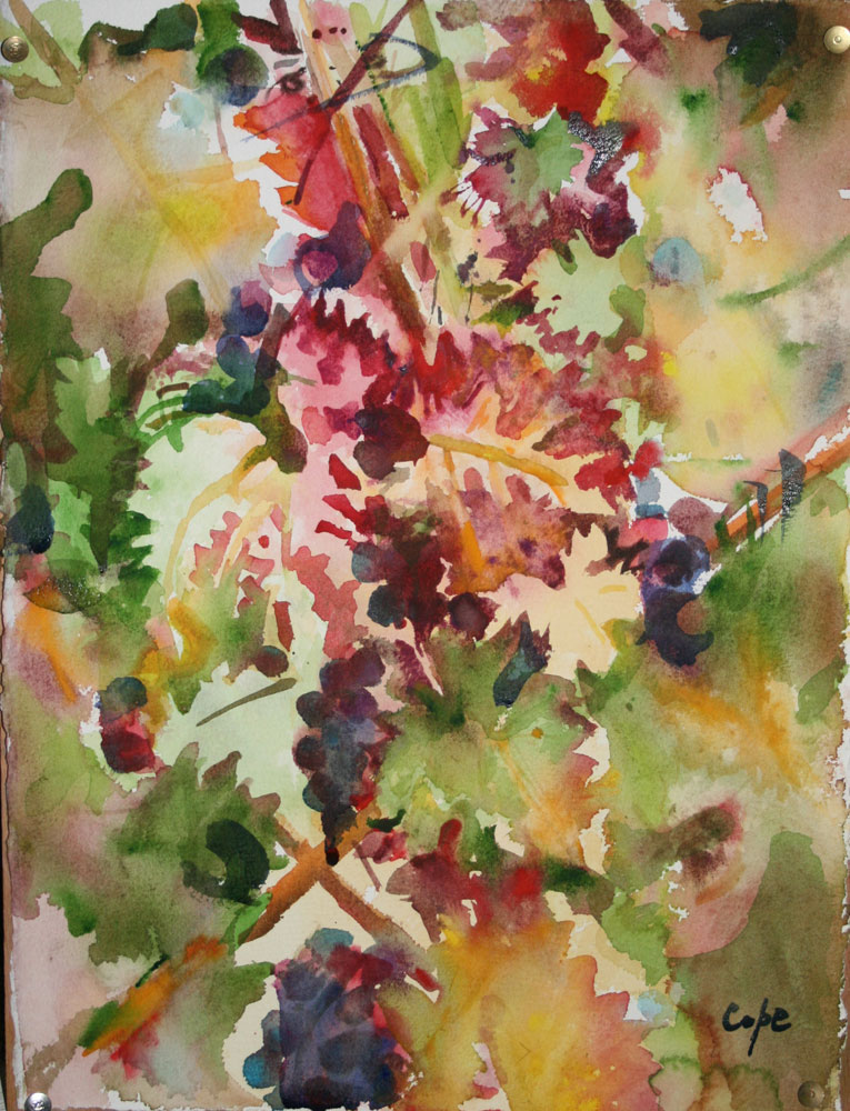 aquarelle,watercolor,vines,grapes,wet in wet,loose,sketchy,painterly,autumn,colours