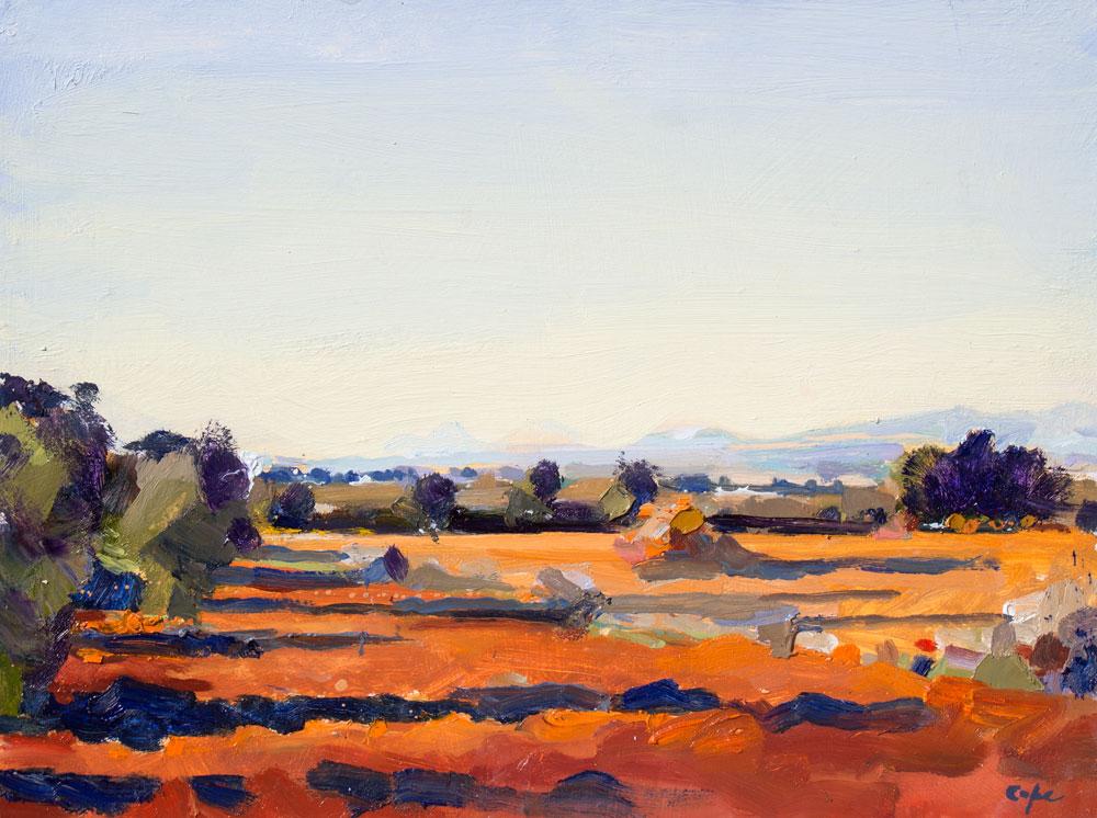 Poil Painting, plein-air, colourful spainish sunset, Picos de Europa, Meseta,Burgos