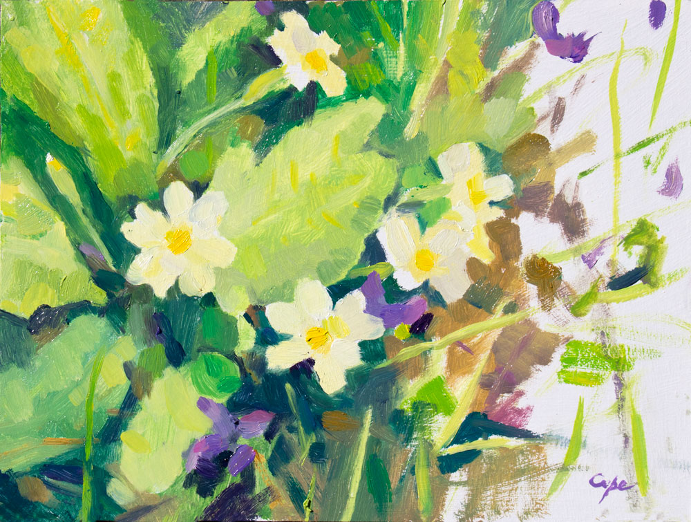 oil painting, spring flowers,primroses,primavere,pleinair flowers