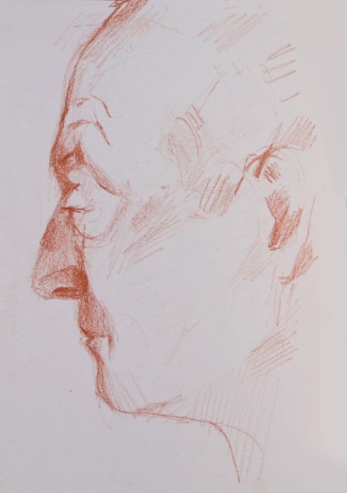 profile man sanguine drawing