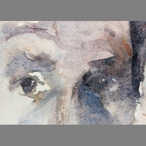 'Self 13/12/07' - detail