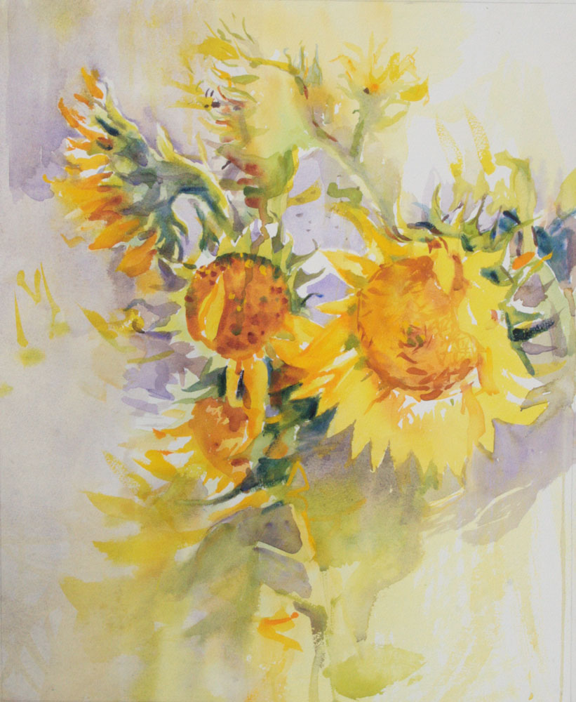 watercolour, sunflowers,wet-in-wet,soft hard edges, adam cope