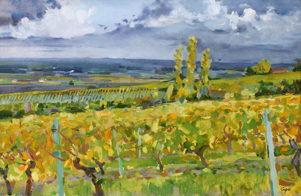 poil painting,monbazillac, dordogne, vines, pleinair, all prima, clouds,