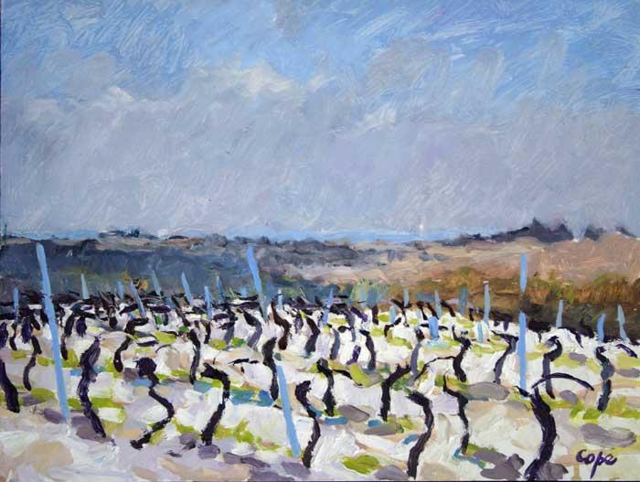 vines,quercy blanc,tableau,painting,pleinair,alla prima,landscape, study