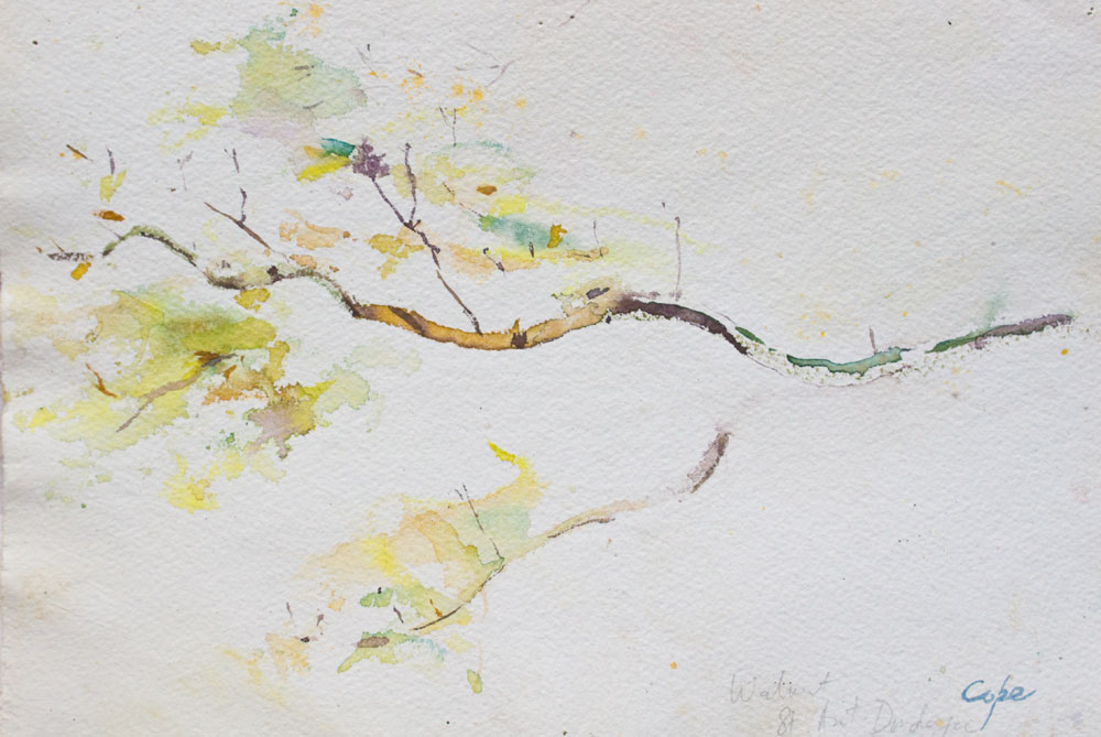 Walnut Branch, Watercolour, contemporary zen painting, no details