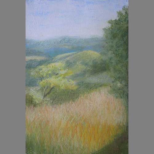 grasses-over-beduer-pastel
