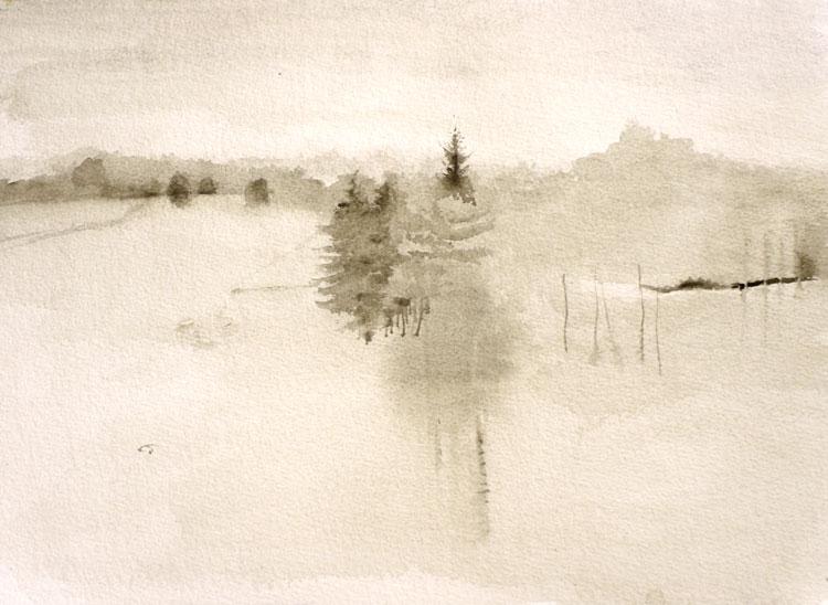 'pine tree' by Martha