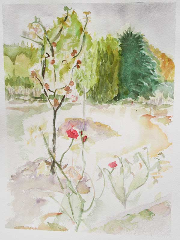 'The Rose Garden at Beduer' Wet on wet watercolour.
