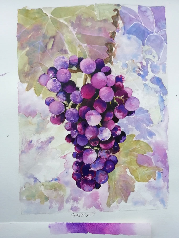 watercolour grapes,france,student painting,workshop example,analgous pair of colours